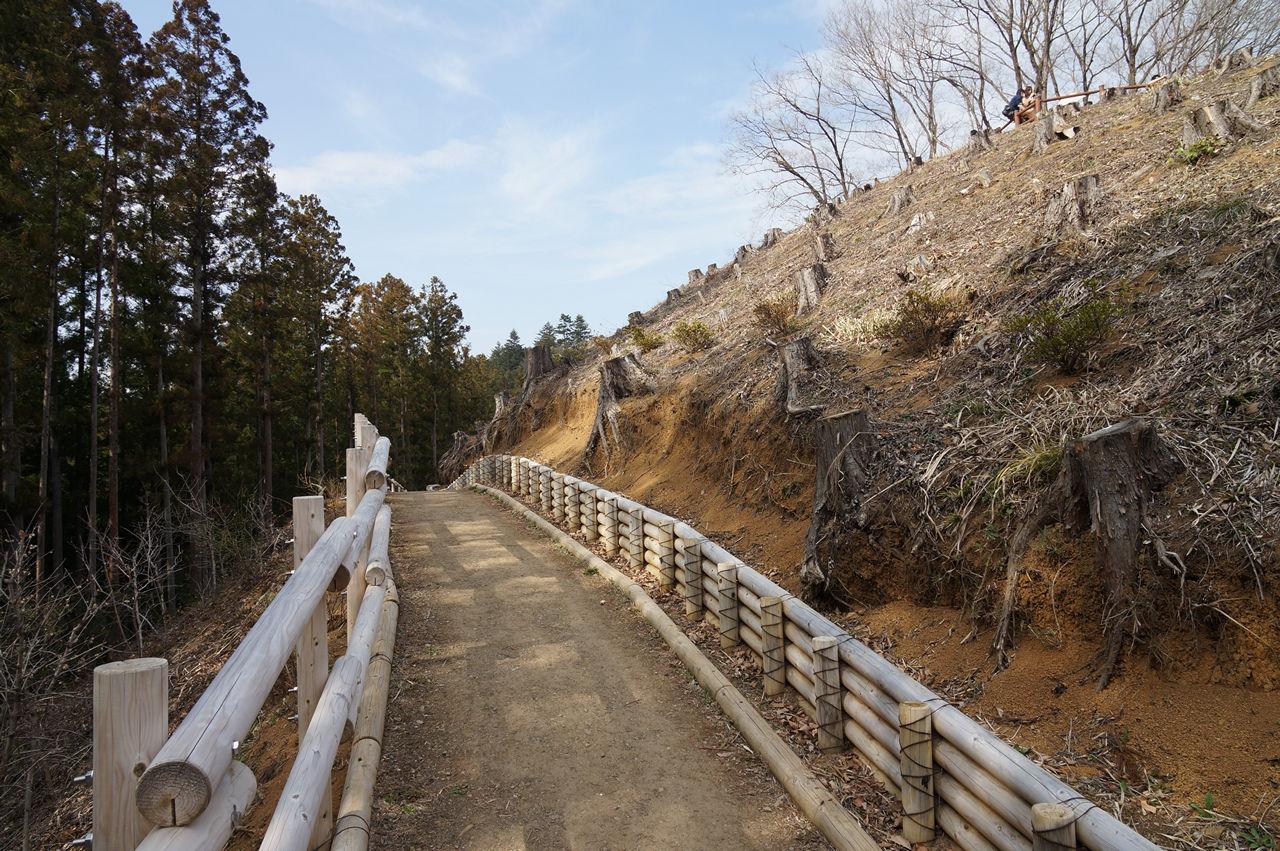 吉野梅郷梅の公園伐採済み小道