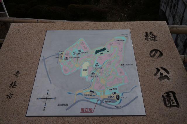 吉野梅郷梅の公園全体図